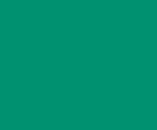 グリーンインテリア、ボタニカル雑貨、ハーバリウムのジェイドグリーンインテリア 西宮苦楽園